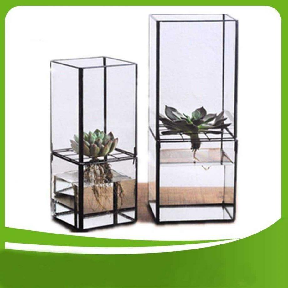 Hydroponic Glass Terrarium