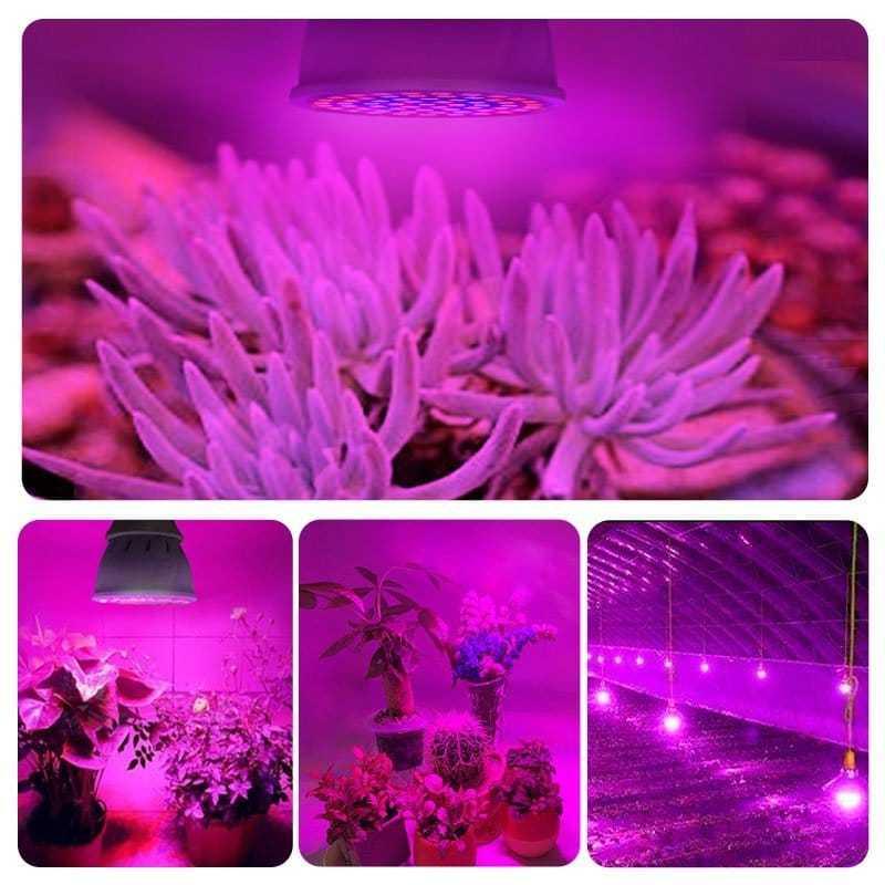Indoor Full Spectrum Plant Growing Lamp