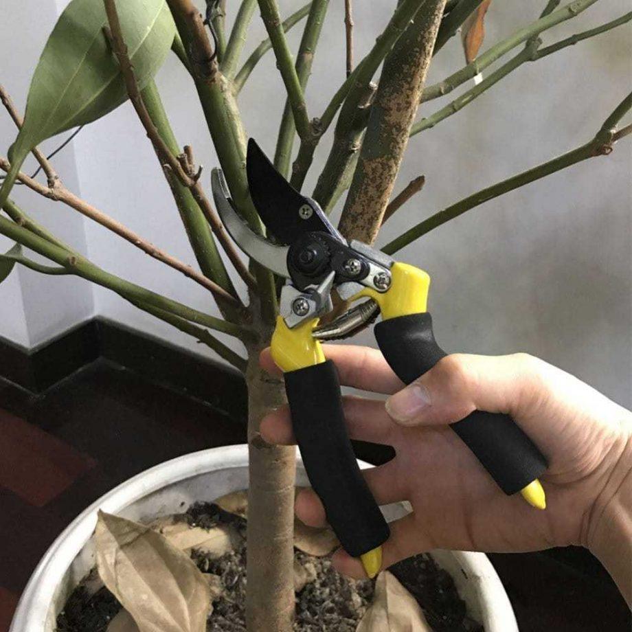 Anti-Slip Grip Fruit Tree Pruning Garden Secateurs