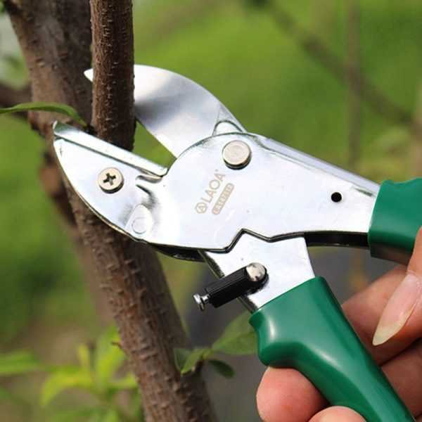 Carbon Steel Pruning Shears for Gardening