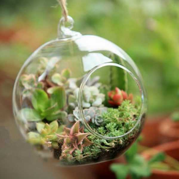 Cute Decorative Hanging Transparent Glass Vase