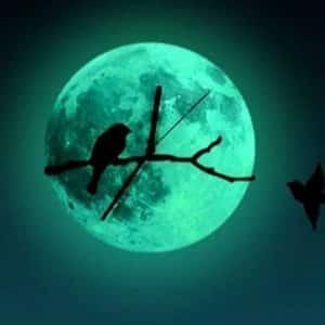 Creative Glowing Moon Wall Clock