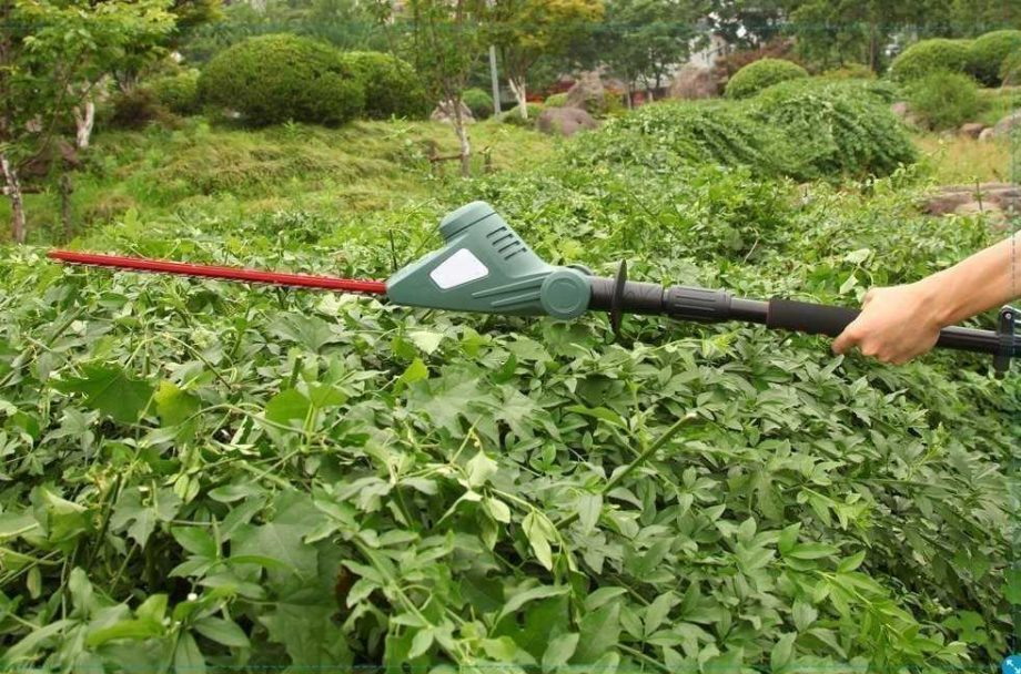 Cordless Pole Hedge Trimmer