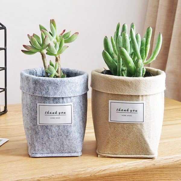 Plant Grow Bag