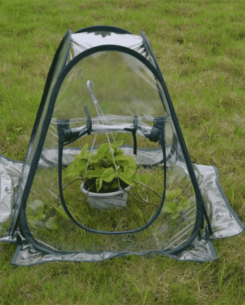 Portable Mini Pop Up Greenhouse