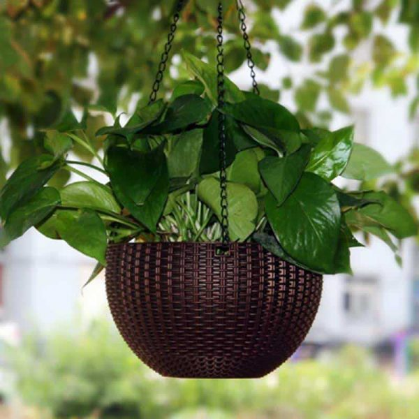 Innovative Hanging Plant Pots