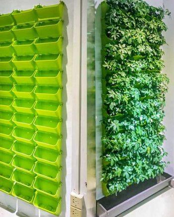 Modular Type Vertical Hanging Wall Pot